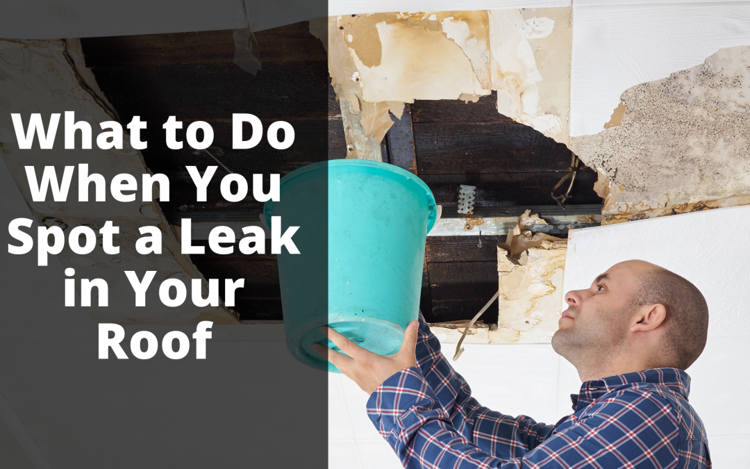What Should I Do If My Roof Is Leaking?